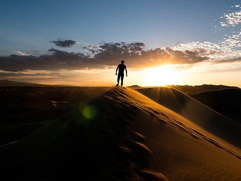 Malle-Field-Report---Mongolia