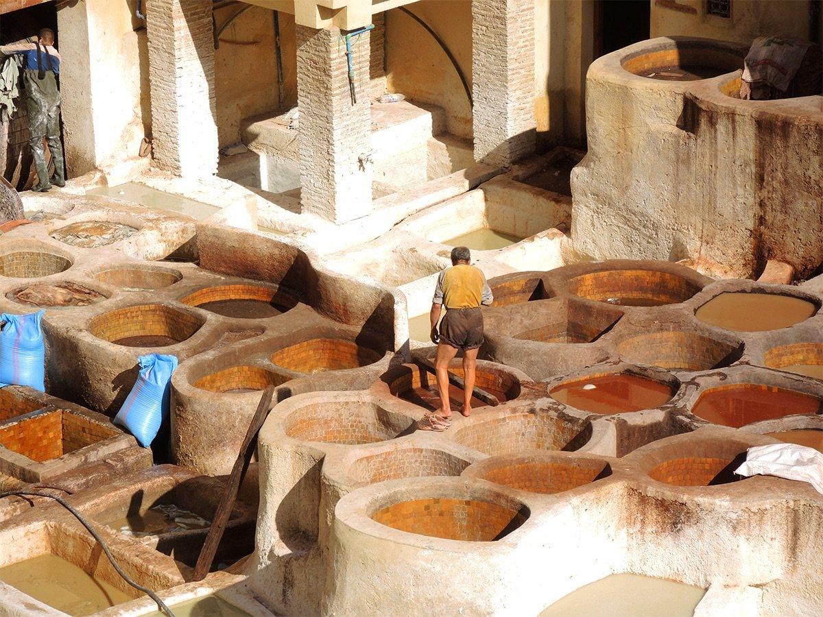 Malle_Morocco_Field_Report12